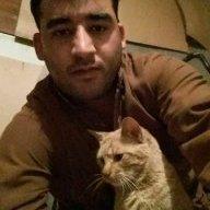 محمد وسیم نقیبی