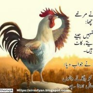 Anees jan