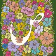 صابرہ امین