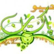 محمد عاطف سعید