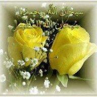 گل بانو