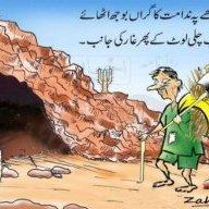 محب اردو
